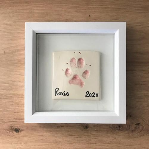 Paw Print Pottery